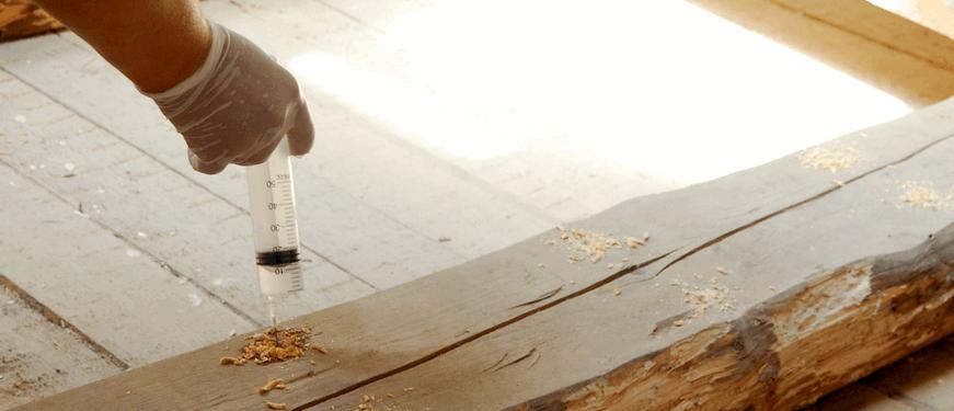 Защита древесины от насекомых
